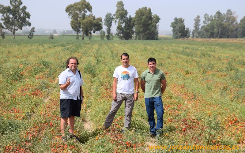Acompañado por los técnicos de Agrogestión Vegas del Guadiana.