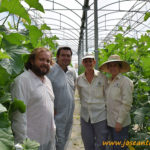 El mayor productor europeo de semillas está en Vélez-Málaga