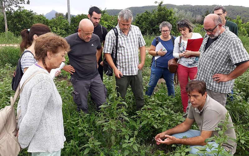Desempleados se forman en agricultura ecológica como opción de futuro