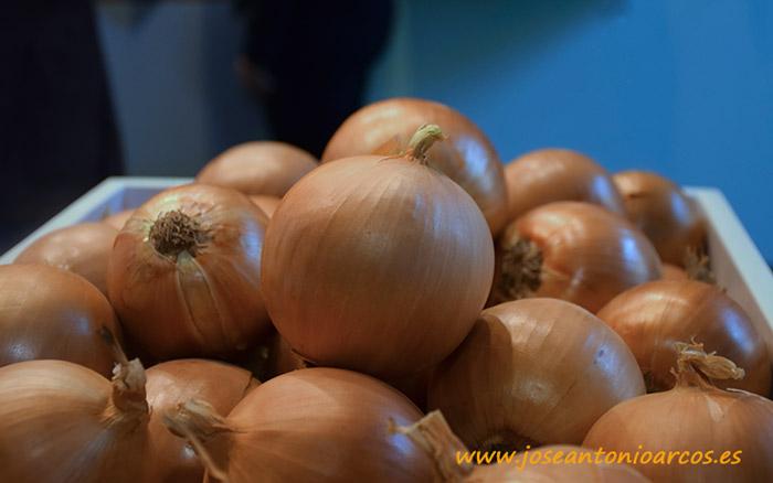 Cebolla Borneo. Takii Seed.