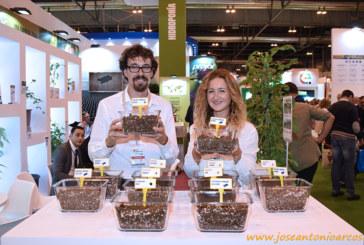 Projar recrea en Madrid cultivos de berries y hortícolas sin suelo