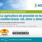 Día 19 de octubre. La agricultura de precisión en los frutales mediterráneos: vid, olivar y almendro
