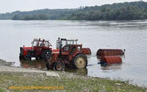 Zanahorias a orillas del Danubio.