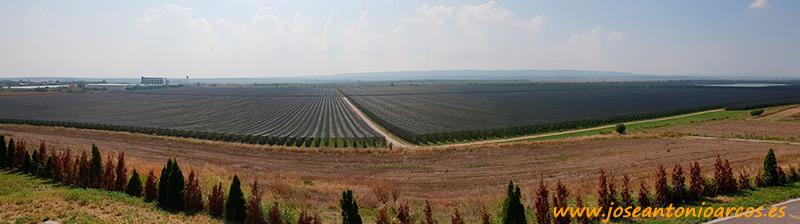 La mayor finca de manzanas de Serbia.