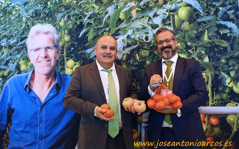 Nuevos tomates de Seminis para Murcia, Sevilla y Cádiz