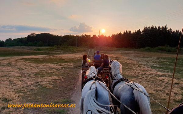 Paseo a caballo entre la frontera de Serbia y Hungría.