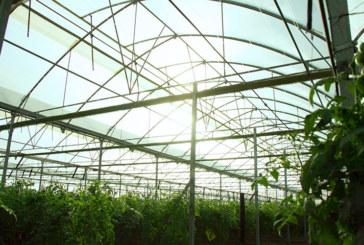 Epigen Tecnology y microbiología de suelo con Keops Agro en Fruit Attraction
