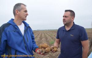 José Ángel Triviño, técnico de Vellsam, en una explotación de, patatas en Serbia.