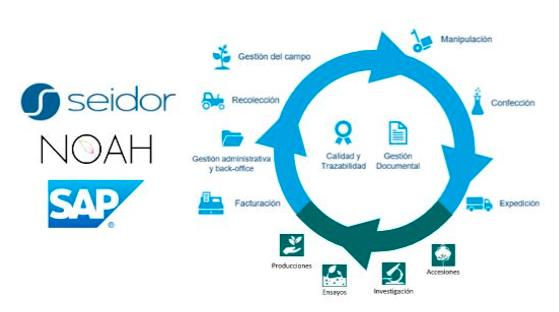 Solución SEIDOR-NOAH en SAP.