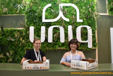 Uniq promociona su software para cartón ondulado