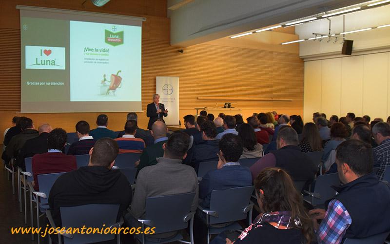 Jordi Fullana, responsable de hortícolas de Bayer para España y Portugal.