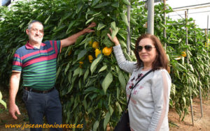 Rosalía y Francisco, agricultores de El Ejido, con Bastión.
