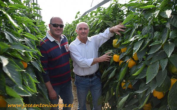 Pimiento Bastión. Sergio Maldonado y Antonio Sánchez.
