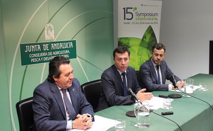 Sevilla será en enero capital mundial de la sanidad vegetal