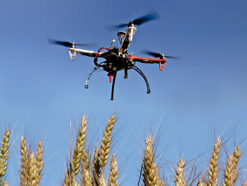 Transformación digital en la agricultura.