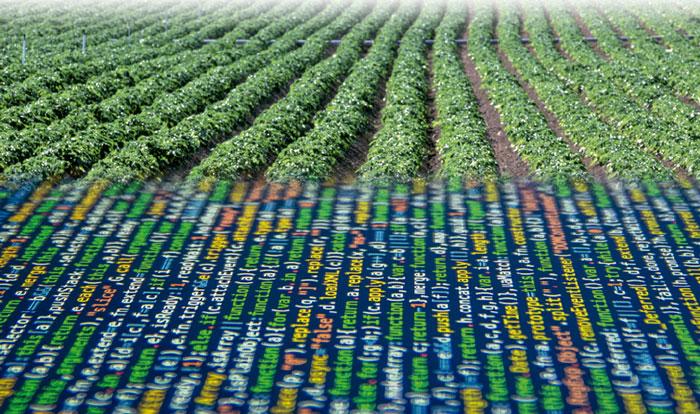 COAG, Ministerio de Agricultura, digitalización.