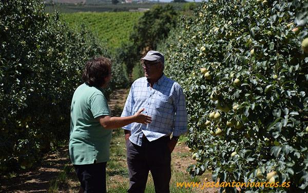 Con Luis Perera, productor portugués de pera Rocha.
