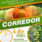 Día 4 de diciembre. Jornadas de tomate de Hazera