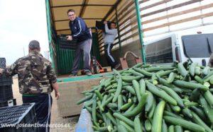 Agricultura Viva en Acción en Almería.