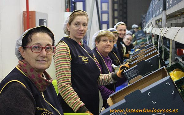Trabajadoras de MAGAR.