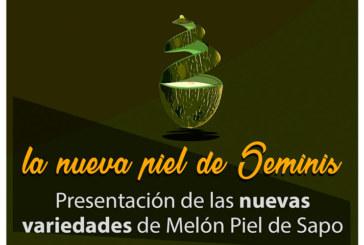 Día 12 de diciembre. Novedades de melón de Seminis. Murcia