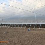 Ampliado el plazo de ayudas para jóvenes y modernización de invernaderos