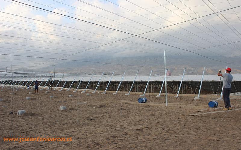 Modernización de invernaderos en Almería.