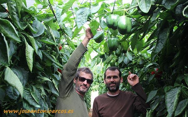 José Barrionuevo y Javier Fernández, agricultor y técnico de Agrupaadra.