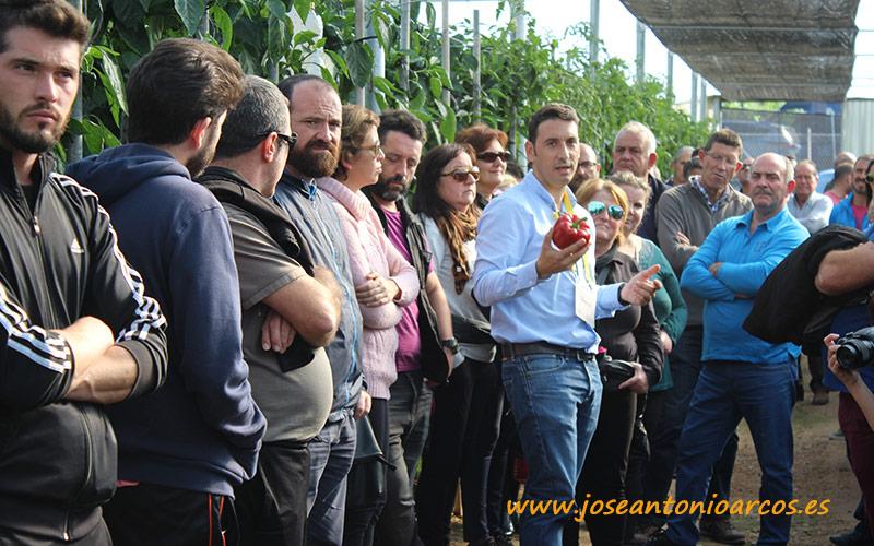 Jornadas de pimiento de HM Clause en Berja, Almería.