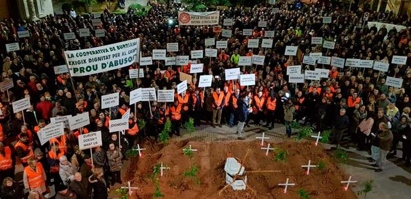 Citricultores de Valencia protestan por la importación de naranjas de Sudáfrica.