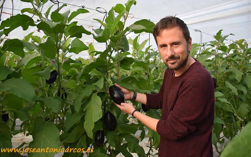 Elías Muñoz, Axia Seeds.