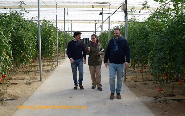 Ensayo de Ecoculture en Tecnova.