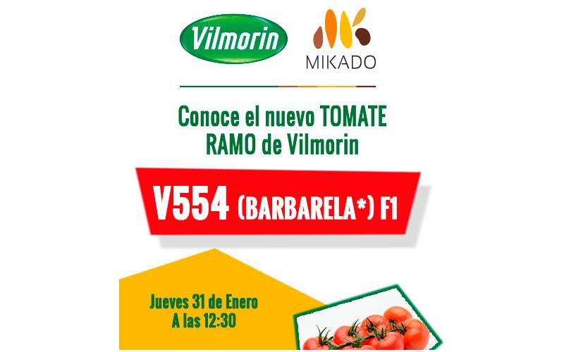 Día 31 de enero. Jornada de tomate de Vilmorin