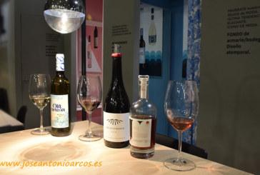 Anecoop Bodegas elegida Mejor Cooperativa Vinícola del mundo