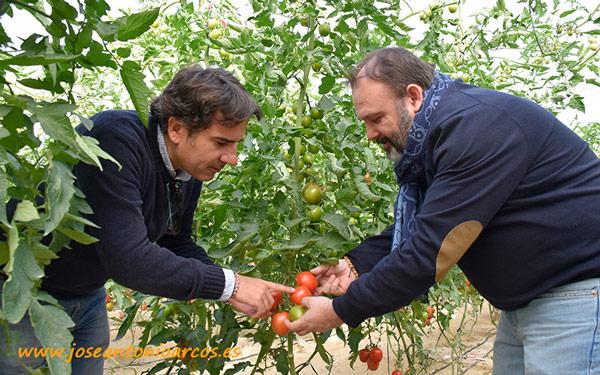 Javier Moreno y Ángel Ruiz. Ecoculture.