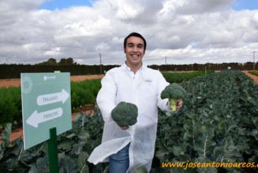 HM Clause entra en brócoli con Principe y Trajano
