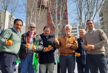 """Los citricultores se trasladan a Madrid para decir """"basta"""""""