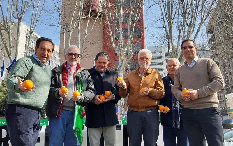 Los citricultores se trasladan a Madrid para decir