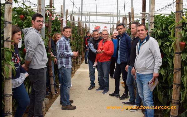 Jornadas de pimiento de Zeraim en Almería.