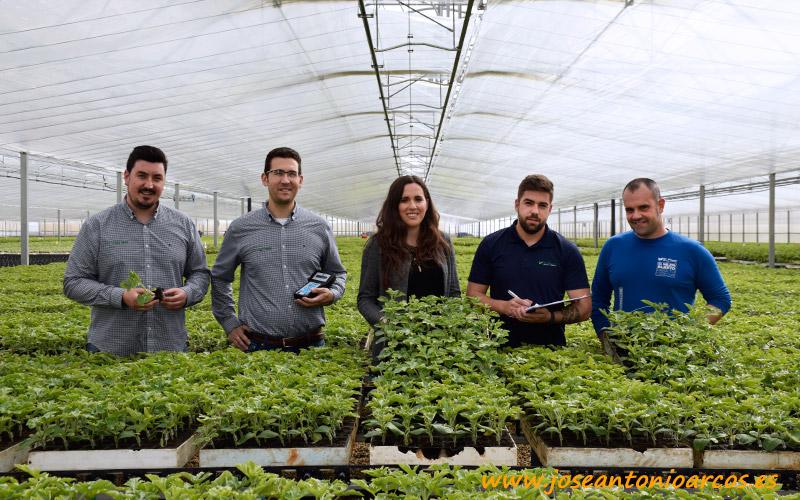 El Plantel sirve injertos de sandía a toda España