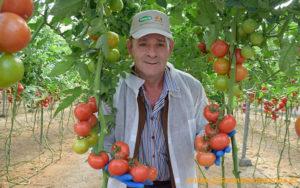 Antonio Antequera, agricultor de Almería.