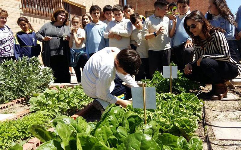 Murcia premiará a sus mejores huertos escolares