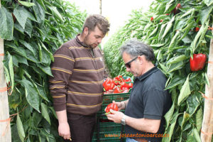 Agricultores grupo Eurosol.