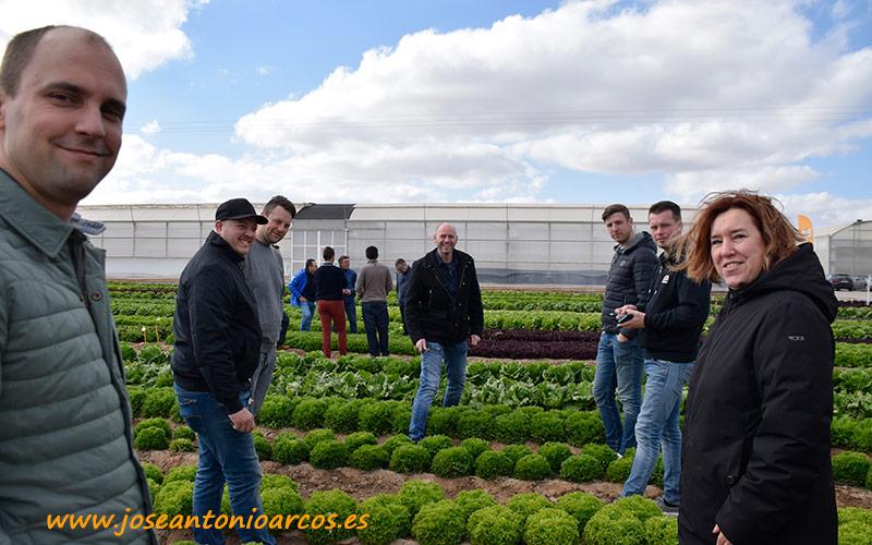 Jornadas de hoja de Nunhems, BASF Vegetable Seeds, en el campo de Cartagena, Murcia.