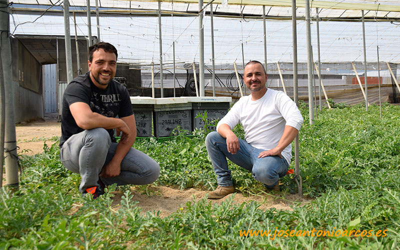 Andrés Fernández, propietario de la finca, y Raúl Molina, de Colmenas Indapol. - joseantonioarcos.es