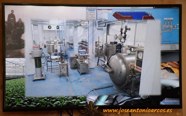 Hacia una industria conservera del caracol.