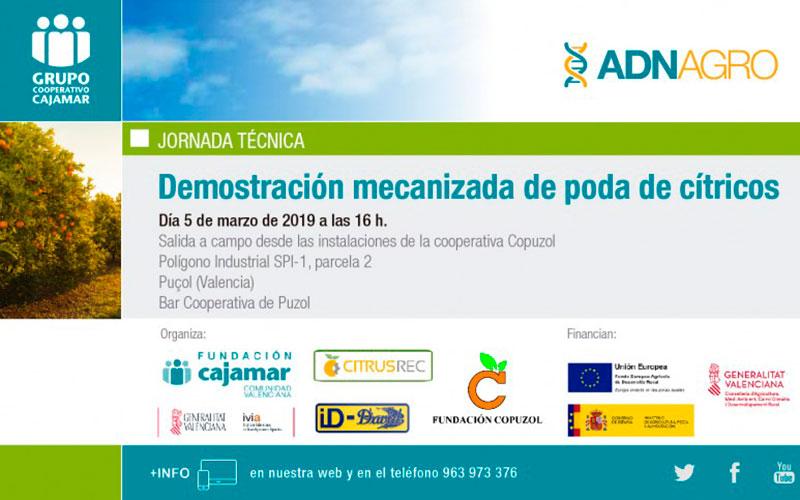 Día 5 de marzo. Demostración mecanizada de poda en cítricos. Valencia