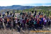 Reforestar la Sierra de Gádor para recargar el acuífero del Poniente