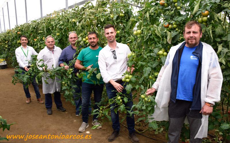 Juan Montes con agricultores y técnicos en el primero de los invernaderos.