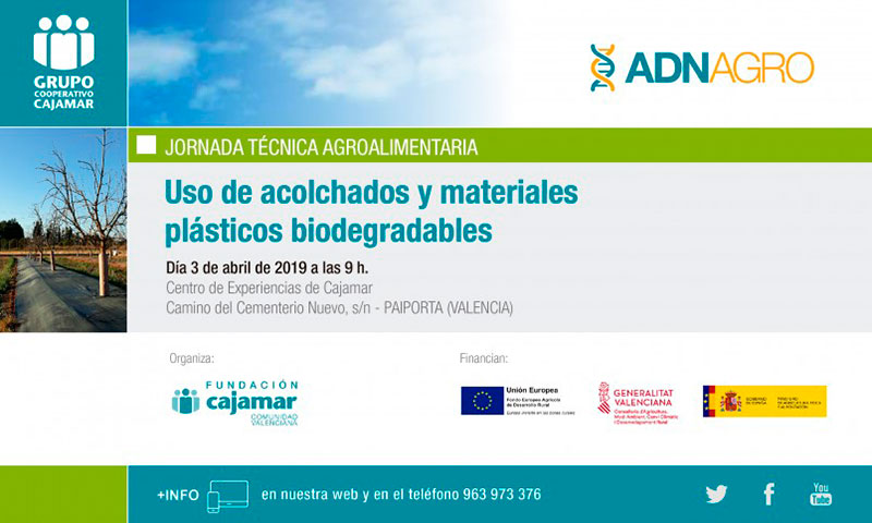 Día 3 de abril. Uso de acolchados y materiales plásticos biodegradables